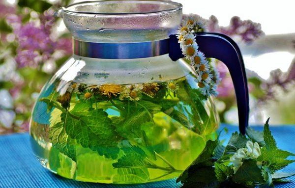 herbal-3504948_640