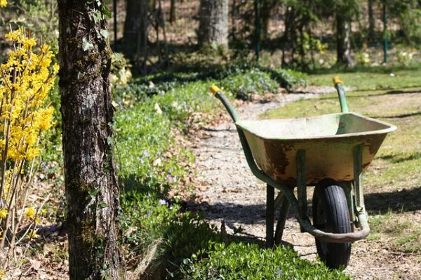 wheelbarrow-716713_640-1