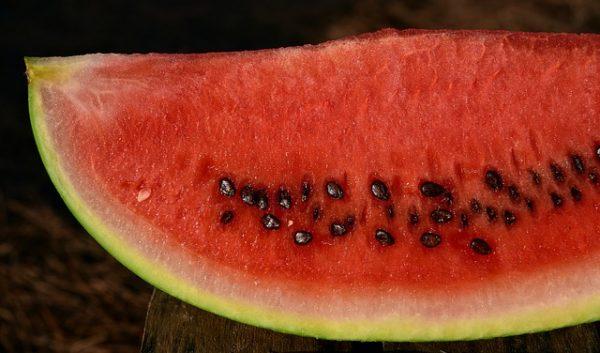 melon-3630342_640