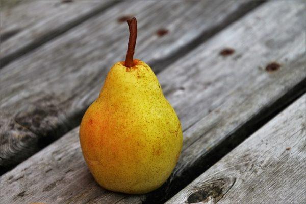 pear-3667632_640