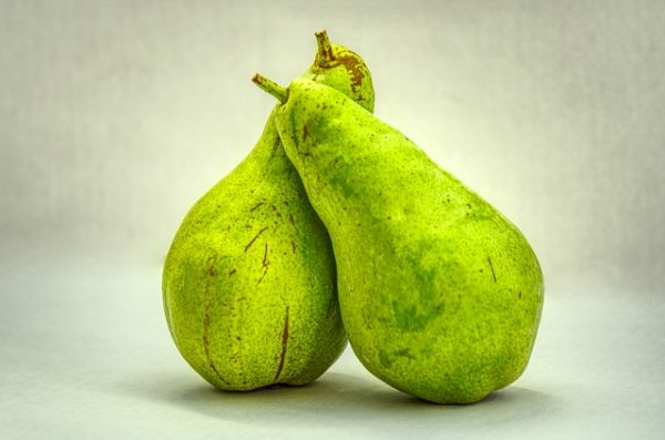 pears-3713039_640