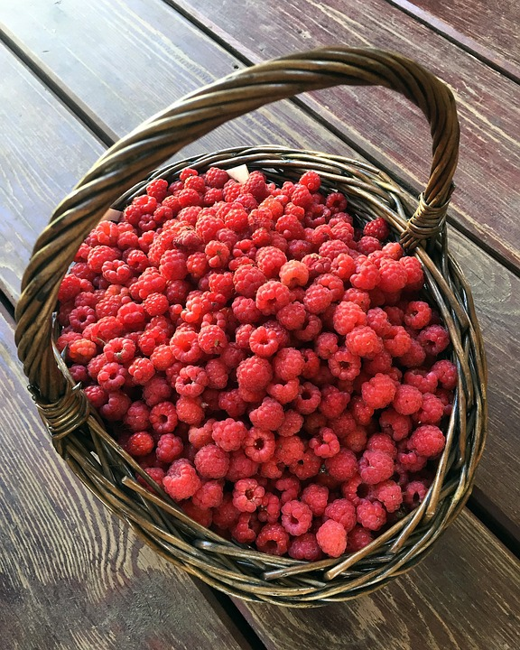 forest-raspberry