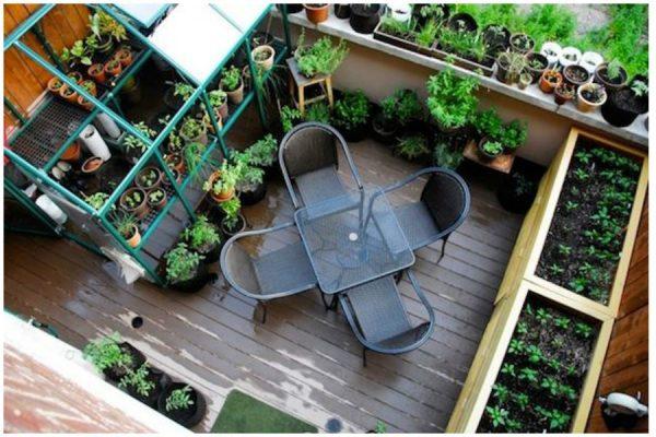 ogorod_na_balkone2