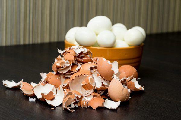 egg_skorlupa