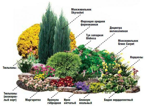 flowers10-1