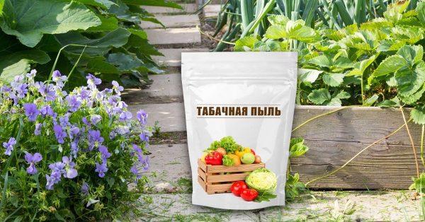tabak_na_uchastke