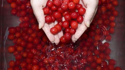 cherry4-1