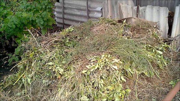 kak_sdelaty_kompost2