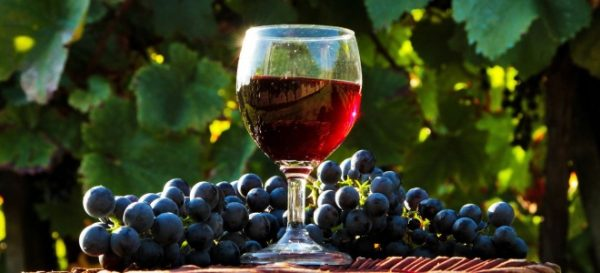 vinogradnoe_vino_v_domashnih_usloviyah