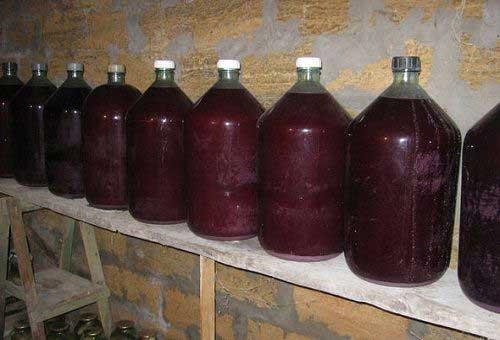 vinogradnoe_vino_v_domashnih_usloviyah6