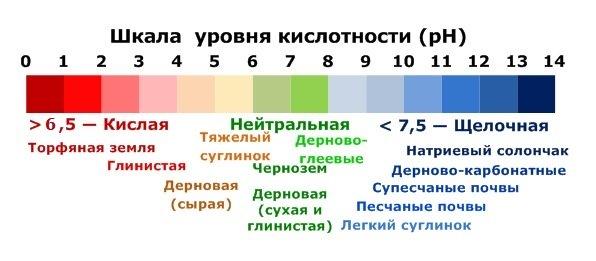 podgotovka_pochvi2