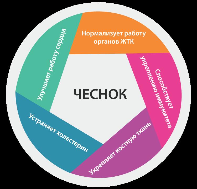 chesnok_sibirskim_sposobom2