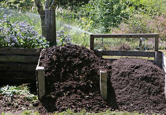 kompost_svoimi_rukami5
