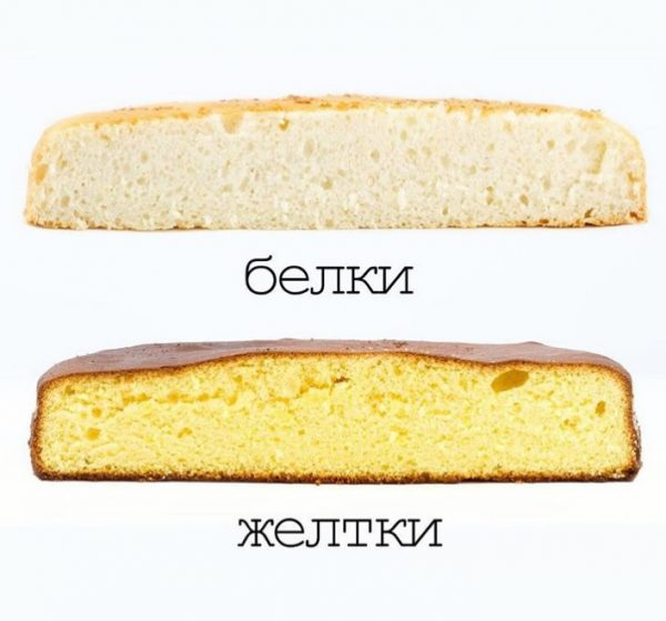 idealyniy_biskvit3