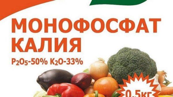 podkormka_klubniki3