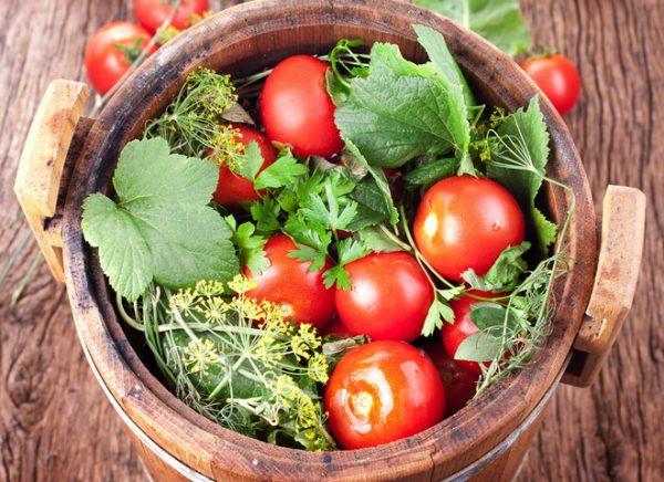 kak_kvasity_tomati2