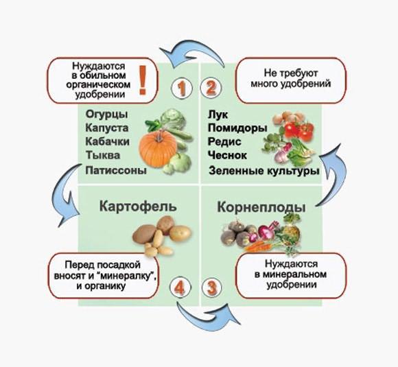 oshibki_ogorodnikov2-4