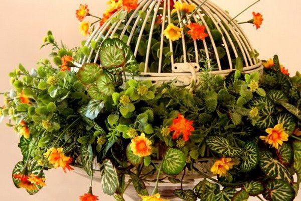 Цветник в клетке для птиц
