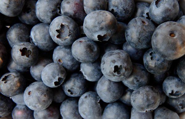 blueberry-3357568_1920