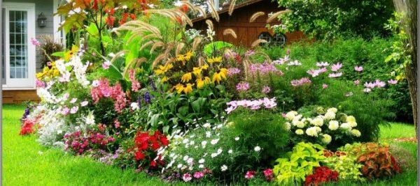 garden2-1