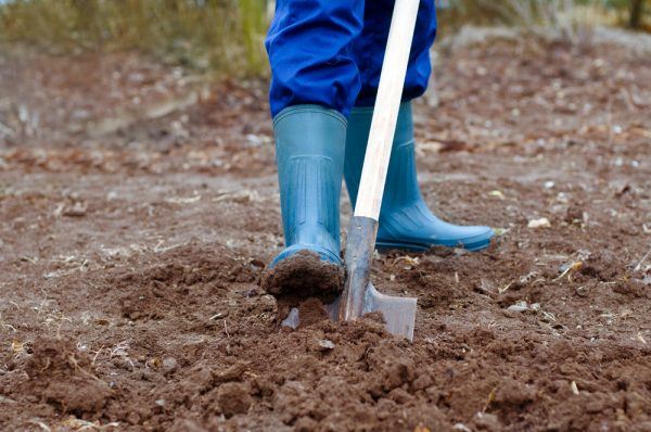 Перекапывать огород