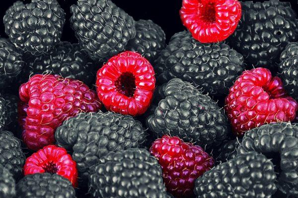 raspberries-612485_1920
