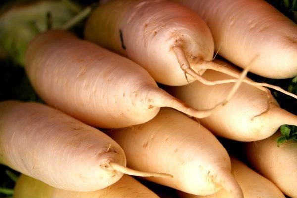 white-carrots-1774749_1920