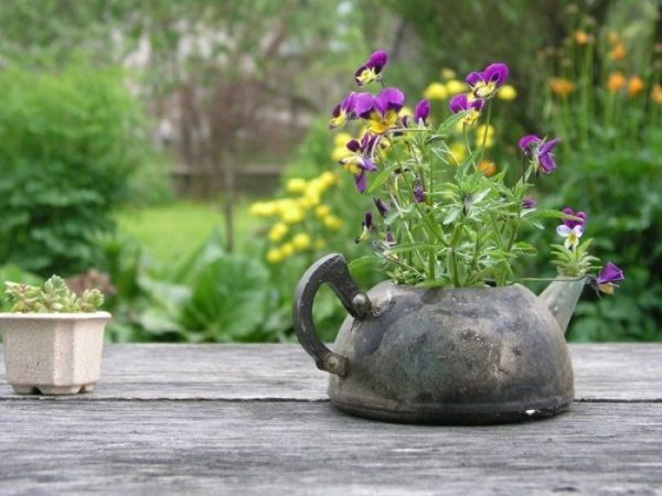Мини-клумба из чайника