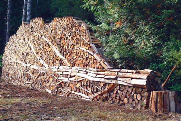 Поленница в виде поваленного дерева