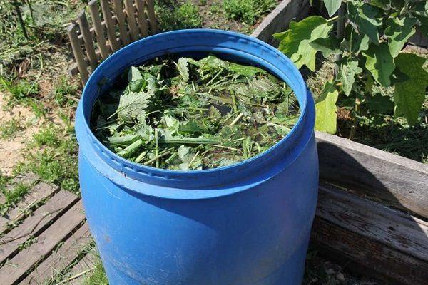 Травы с ботвой томатов залить водой в бочке