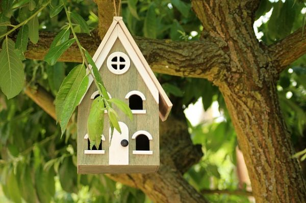 birdhouse-3395575_640