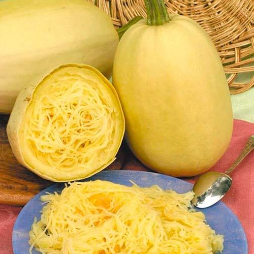 kabachok-spagetti