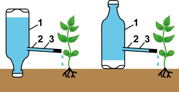 Система капельного полива из пластиковой бутылки