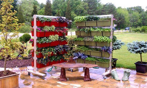 Идеи для контейнерных садов и огородов