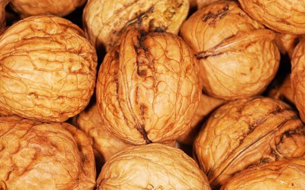 walnut-101462_640